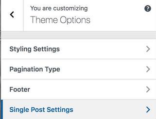 Click Single Post Settings on Theme Options Menu