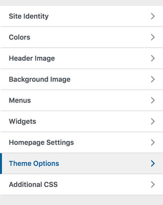 Click Theme Options On Customize Menu