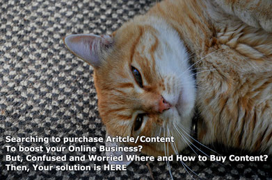 Confused and worried where and how to buy content/article? Then Answer is here, buy articles cheap, freelance web content writer,  purchase website content