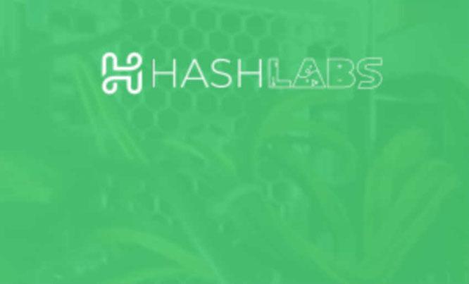 HashLabs complaints. Is a HashLabs fake or real? Is a HashLabs legit or hoax?