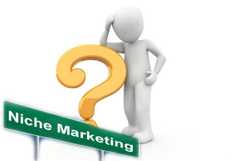 What is Niche Marketing definition, how to find a Profitable Niche for online business, What is Niche a Market